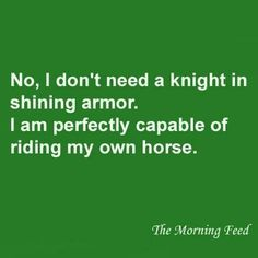 Darn right! Besides... who wants a knight in shining armor? Its the knight in scuffed and dented armor that I'm waiting for. He goes out and fights the dragons.