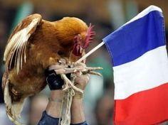 Francia con nove facce nuove e senza capitano per il tour tra i Pumas