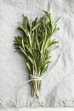 Fresh Rosemary - Great for poultry seasoning!