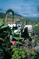 Mazo Strand, Santa Cruz, Palms, Holiday Destinations, Travel Destinations, Canarian Islands, Tenerife, Restore
