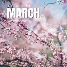 #Spring is finally here! :) Check out my new #playlist: The Best #Alternative #Music from March: https://soundcloud.com/zapetlone/sets/the-best-of-march-2016