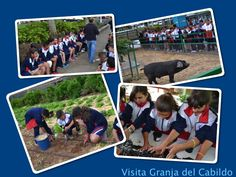 Visita a la Granja del Cabildo (Gran Canaria)
