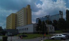 UVLF-college