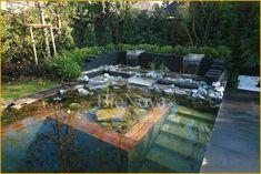bioNova natural pool
