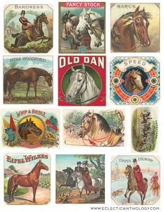 Free vintage graphics for any project. Vintage papers, clip art, labels, flowers, illustrations and more.