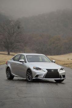 Lexus - cute image