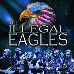 The Illegal Eagles - Friday 7 October - 7.30pm. More info: http://www.cityhallsalisbury.co.uk/index.php?page=1634