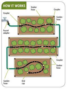 Raised Bed Vegetable Garden Layout | Snip-N-Drip Soaker Hose