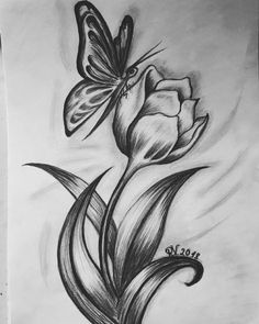 would like to share my drawing of tulp and butterfly ;) art Tulp and butterflyI would like to share my drawing of tulp and butterfly ;) art Tulp and butterfly Easy Pencil Drawings, Landscape Pencil Drawings, Pencil Drawings Of Flowers, Pencil Sketch Drawing, Cool Art Drawings, Art Drawings Sketches, Drawing Faces, Art Illustrations, Drawings Of Butterflies