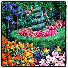 "@victorpolonolla's photo: ""#Colors de #Regent #park #Snapseed #flowers #flors #igers #instagram #instagramcatalunya #iphonesia #fotodeldia #bestoftheday #photography #photo #instamood  #ubiquography #ig #igaddict #webstagram#MiVeranoDestinia#gang_family #gf_daily"""