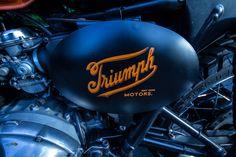 Triumph Logo, Triumph Bikes, Motorcycles, Custom Tanks, Triumph Bonneville, Motorcycle Bike, Explore, Stickers, Motorbikes