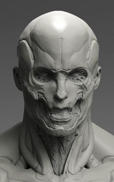 My Head sculpt piece aimed to practice contrast of soft and hard edges. Im trying not to polish too much on the hardsurface parts but use contrast to highlight it. Btw,its somewhat inspired by Tsutomu Nihei's design