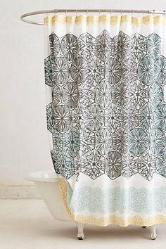 bathrooom curtain!