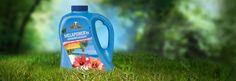 laundry detergent  melaleuca.com