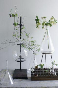 05. chemistry-vase