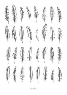 Feather tattoo options, I like some of the beat up looking ones because they cou | Promo Bonus Coupons&Codes