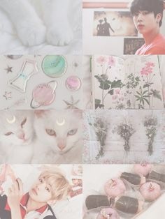 aesthetic」Like a Cats Cat Aesthetic, Aesthetic Collage, Pastel Edits, Korean Pop Group, Cute Glasses, Purple Cat, Bts Backgrounds, Like A Cat, Bts Bangtan Boy