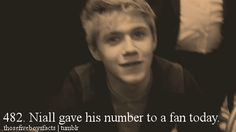 one direction facts | Tumblr     i just died.