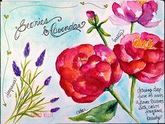 PEONIES & LAVENDAR | Watercolor Journal | Valerie Weller | Flickr Watercolor Journal, Watercolor Flowers, Watercolor Art, Art Journal Pages, Art Journals, Journal Ideas, Art Sketchbook, Peonies, Roots