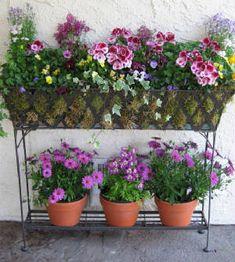 Spring Planters