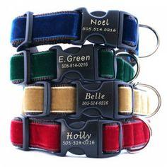 Engraved Buckle Velvet Dog Collars!