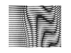 dammylee :: 111010 moire/wave propagation