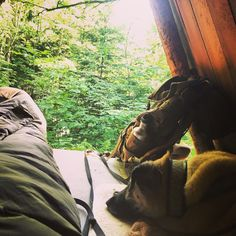 Hiking Boots, Survival, Dogs, Outdoor Adventures, Pet Dogs, Doggies
