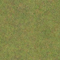 Seamless Golf Green Grass Texture + (Maps) | texturise