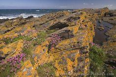 Fraserburgh, North Coast