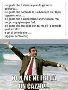 e poi ci sono io! Wtf Funny, Funny Facts, Funny Cute, Funny Jokes, Funny Images, Funny Photos, Italian Memes, I Can Do It, Friends Tv Show