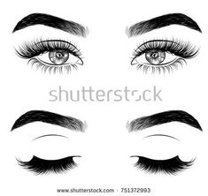 Hand-drawn woman's fresh makeup look with perfectly perfectly shaped eyebrows and extra full lashes. Idea for business visit card, typography vector.Perfect salon look Eyebrows Sketch, Eyelashes Drawing, How To Draw Eyelashes, Longer Eyelashes, Fake Eyelashes, Perfect Eyebrow Shape, Perfect Eyebrows, Fresh Makeup Look, Makeup Looks