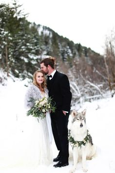 bride and groom and a wedding wolf dog