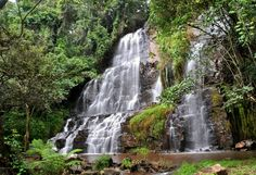 Top Places to Visit in Burundi People who travel to Africa look for adventure, challenge and fun rolled into one. Now, if you are one of those tourists who don't mind getting their hands and feet dirty, go to Burundi. It is an exotic place with culturally-inclined people that is so very different from what you are accustomed to. Here is a Burundi travel guide with ten of the most popular tourist attractions in the country. These are mostly nature destinations because that's what Burundi can…
