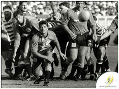 Rugby League, Rugby Players, Rugby Pictures, Australian Football, Team Photos, Illustrations, Real Man, My Hero, Soccer
