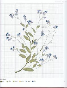 Gallery.ru / Фото #19 - Herbier - Mosca - myosotis