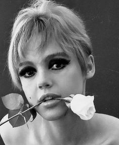 Edie Sedgwick with Rose, photographed by Ronald Bacsa 🌹 Edie Sedgwick, Charlotte Rampling, Twiggy, Andy Warhol, Bianca Jagger, Alexa Chung, Poor Little Rich Girl, Timeless Beauty, Old Hollywood