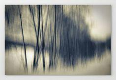 #landscape #photo #abstract #Wood #wald   http://www.artefactum-shop.de/alle-kunstwerke/landschaften/df10-forest/