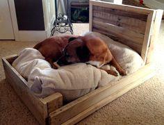 15 Super Cute Wood Pallet Dog Beds | RenewPurpose