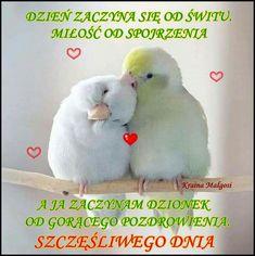 Good Morning, Feelings, My Love, Good Morning Funny, Buen Dia, Bonjour, Good Morning Wishes