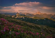 Cascadian Layers by Trevor Anderson on 500px
