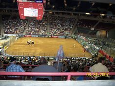go to a rodeo