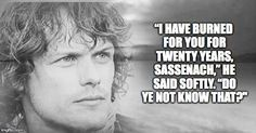 quote from Dragonfly in  Amber