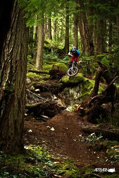 """Mountain Biking. http://WhatIsTheBestMountainBike.com #WhatIsTheBestMountainBike Use promo code """"PINME"""" for 40% off all hammocks on our site maderaoutdoor.com. 2 trees planted per hammock sold!"""