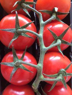 Hübsche Tomaten ohne Geschmack