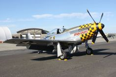 """P-51 is the actual aircraft flown by Harrison B. Tordoff when with the 352nd Fighter Squadron. An gentleman named Paul Terry wrote to him back in 2007 and asked where the name on his P-51 came from. He said and I quote, """"Upupa epops' is the scientific name of the hoopoe, a European bird of """"bizarre appearance, weak of flight and untidy nesting habits."""""""