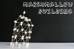 Build with marshmallows and toothpicks.  My idea: Create DNA models or architecture of famous buildings and places. ~Lori