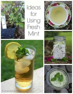Ideas for using mint!
