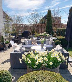 Enjoying The Sun, Outdoor Furniture Sets, Outdoor Decor, Spring Time, Exterior, Patio, Day, Instagram, Gardening