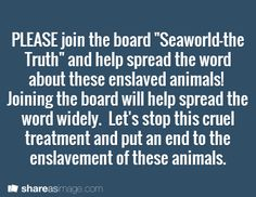 """PLEASE join the board """"Seaworld-the Truth"""" and ask your friends to help spread the word about these enslaved animals!  Joining the board will help spread the word widely.  Let's stop this cruel treatment and put an end to the enslavement of these animals."""