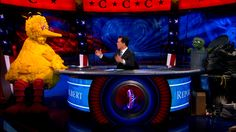 Stephen Colbert moderates a Crossfire style debate between Big Bird and Oscar the Grouch on the Colbert Report.